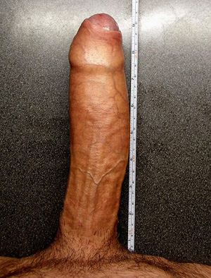 grosse queue en erection bite de 24 cm